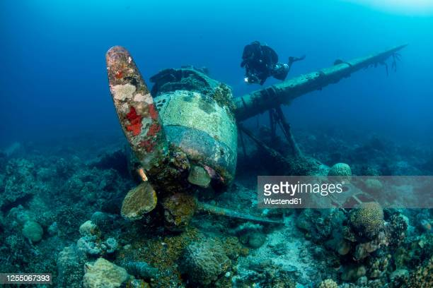 palau, diver exploring japanese airplane wreck jake sea plane underwater - airplane crash stock pictures, royalty-free photos & images