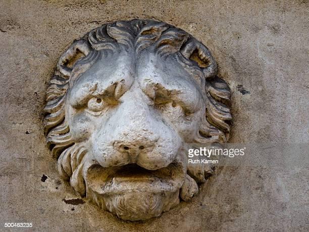 Palazzo dei Bentivoglio, via Giuseppe Garibaldi 90, Ferrara. Decoration on facade - lion.