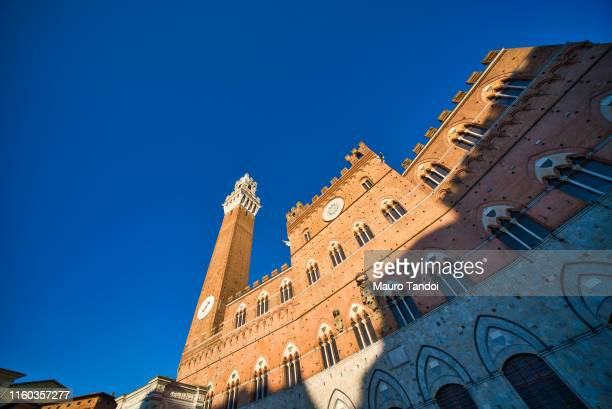 palazzo pubblico at dusk, siena, tuscany, italy - mauro tandoi stock pictures, royalty-free photos & images