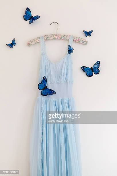 Pale blue nightgown hanging on a floral hanger surrounded by butterflies