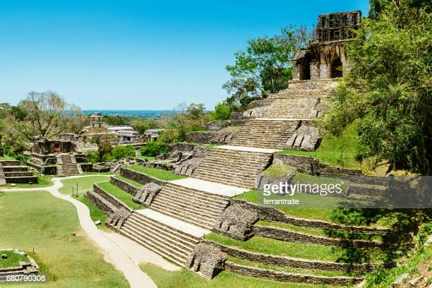 palenque chiapas mexico - archaeology stock pictures, royalty-free photos & images