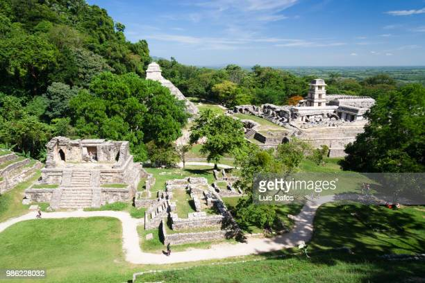 palenque overview - dafos stock photos and pictures