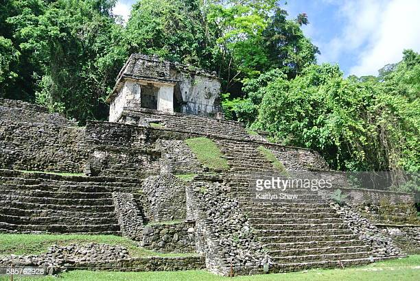 palenque - latin american civilizations stock photos and pictures