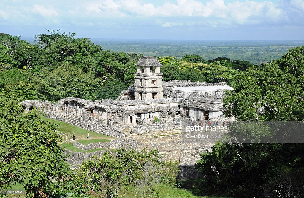 Palenque Mayan Palace, Observation Tower, Jungle : News Photo