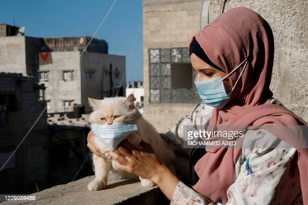 Palestinian artist Khulud al-Desouki pets a cat during lockdown at home in Khan Yunis in the southern Gaza Strip, on October 12 amid strict...