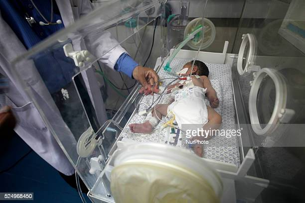 Palestinian baby girl Shayma Shiekh alEid lies in an incubator after doctors delivered her from the womb of her mother whom medics said was killed in...