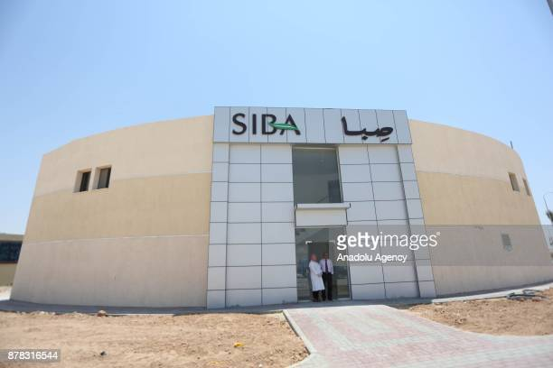Palestinian entrepreneur Ihlas Savalihe 46yearold poses for a photo outside her factory 'Palestinian House of Soap SIBA' in Jericho West Bank on...