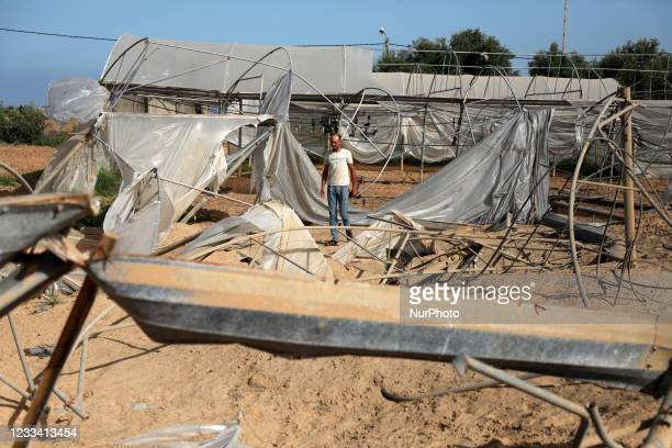 Palestinian farmer inspect a damaged field in the wake of recent Israeli air strikes during an 11-day war between Gaza's Hamas rulers and Israel, in...