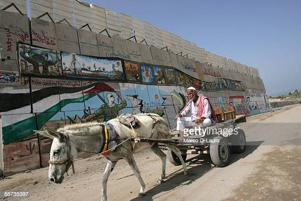 Palestinian farmer passes by graffiti on the former Israeli security wall that divided the Gush Katif settlements from the nearby refugee camp on...