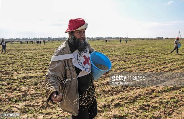 TOPSHOT Palestinian farmers allowed by Israel to tend their land in a buffer zone on the border between Israel and the Gaza Strip for the first time...