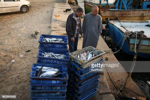 Palestinian fishermen prepare fish for sale after a night long fishing trip in Gaza seaport on October 19 2017 Fishermen in Gaza can now sail farther...