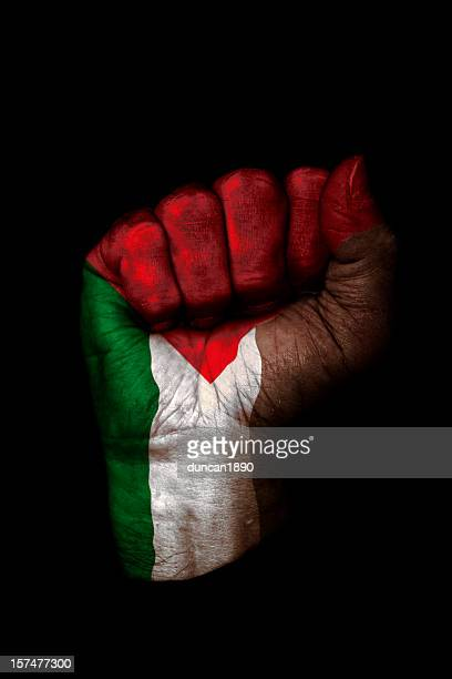 palestinian flag fist - palestinian flag stock pictures, royalty-free photos & images