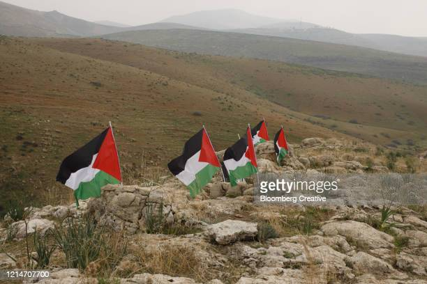 palestinian flags - west bank stock pictures, royalty-free photos & images