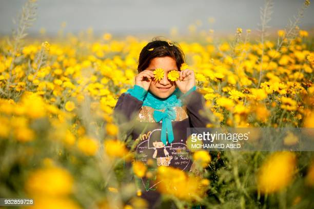 A Palestinian girl plays in a field of wild mustard flowers which grow across the Gaza Strip near the border fence east of Gaza City on March 16 2018...