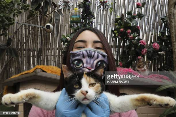 Palestinian Hiba Junaidi wearing protective gloves and mask amid the COVID19 outbreak poses with one of the stray cats she cares for in her house's...