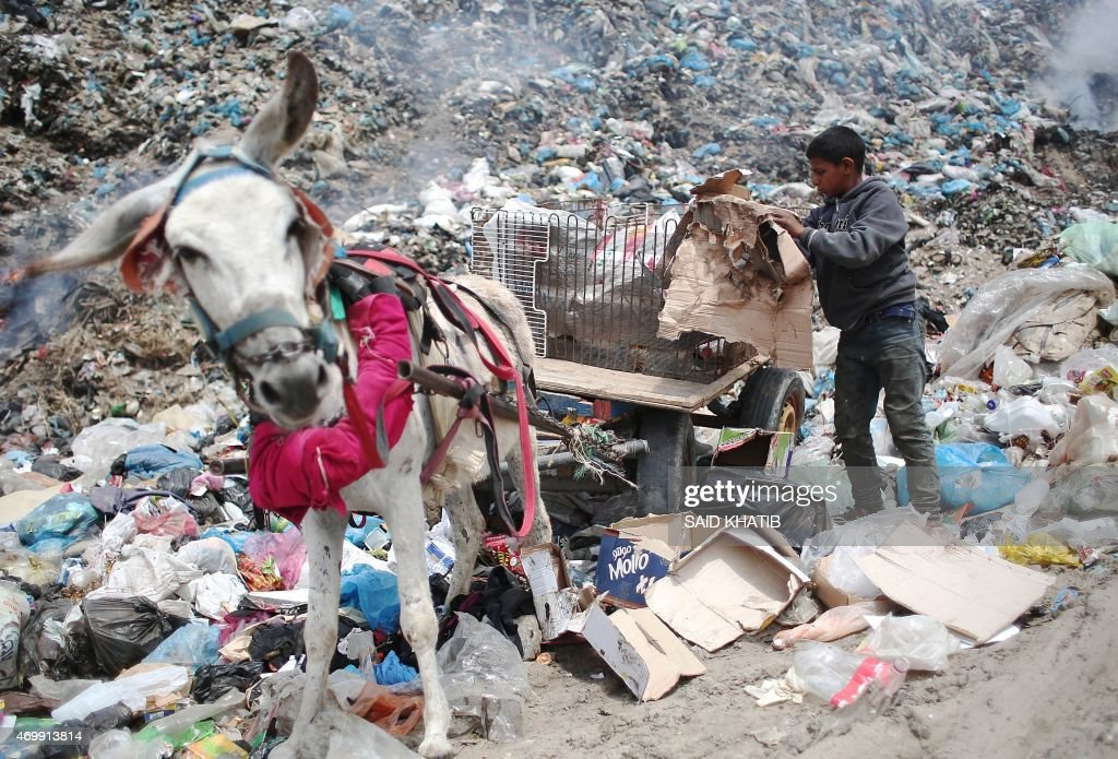 Palestinian Hussein Al-Najjar, 14-years-old, fills a donkey-pulled cart with recyclable waste and other items he collected, in hope to be able to sell them, at a garbage dump in Rafah, in the southern Gaza Strip on April 16, 2015.