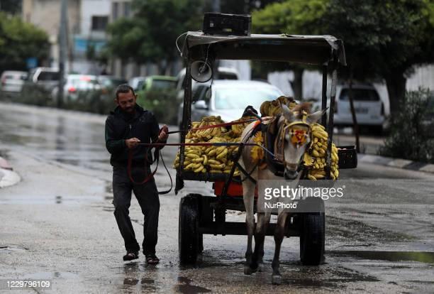 A Palestinian man drives a donkeydrawn cart during heavy rain in Gaza City on November 26 2020