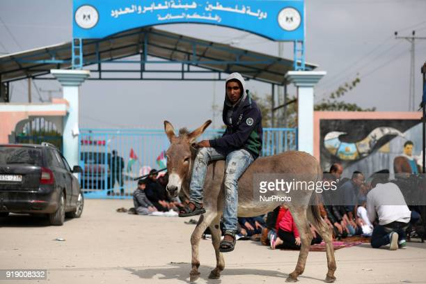 A Palestinian man rides a donkey near the Erez crossing with Israel in the northern Gaza Strip February 16 2018