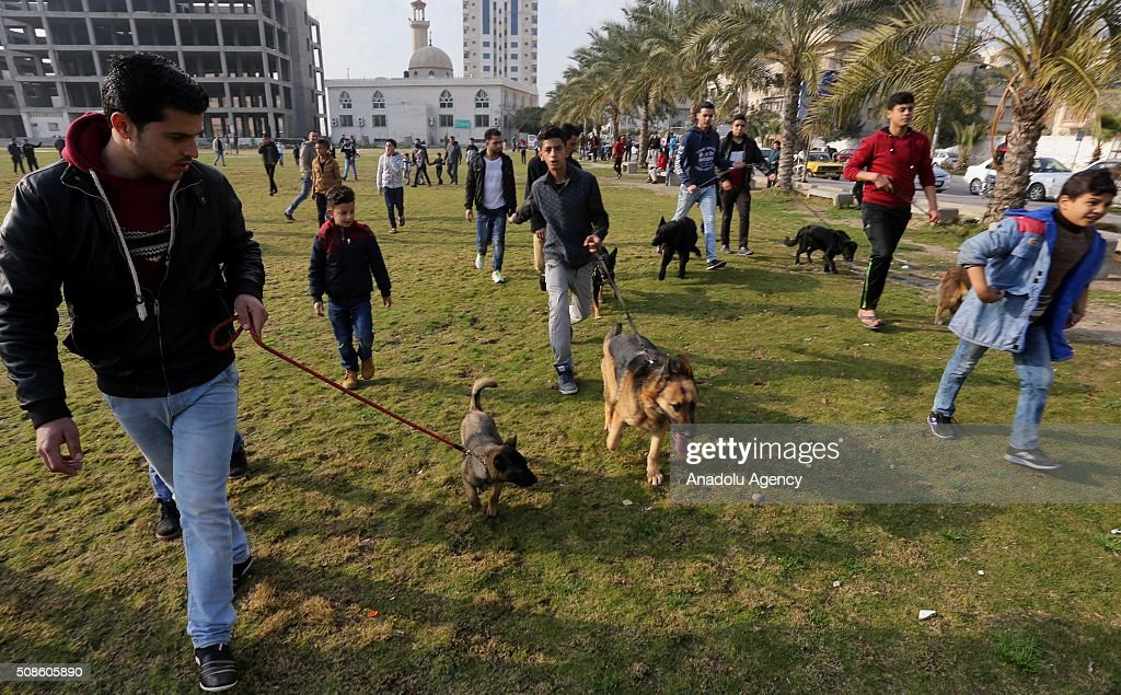 Palestinian men are seen near their dogs as Palestinian animal lovers host an event with their different breeds of dogs aiming to draw attention to the importance of giving homes to dogs, in the area of al-Katiba in Gaza City, Gaza on February 5, 2016.