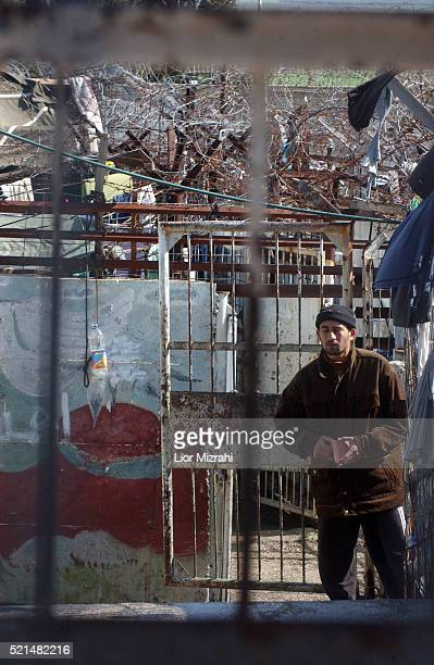 Palestinian prisoners, convicted of security offenses against Israel, are seen at the courtyard in Megido jail, northern Israel February 15, 2005....