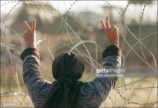 A Palestinian woman flashes the Vsigns 08 January 1988 in Gaza while facing barbed wire of the Ansar II prison camp The Palestinian uprising...