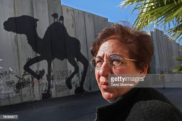 Palestinian woman on her way to work pauses to look at graffiti of a camel attributed to a Spanish artist called Sam3 on Israel's separation barrier...