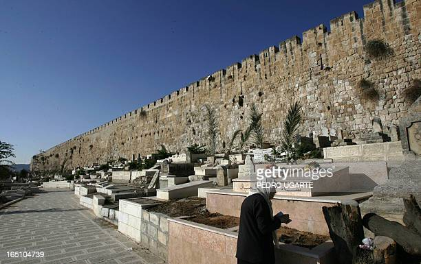 A Palestinian woman recites the Fatiha the opening Surat of the Koran over the graves of her relatives a ritual performed by Muslims during the early...