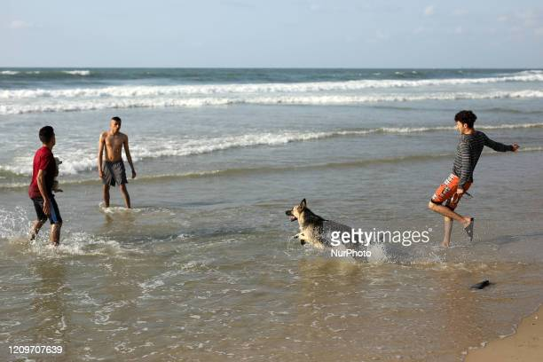 A Palestinian youth teaches his dog how to rescue at sea at the beachamid concerns about the spread of the coronavirus disease in Gaza City on April...