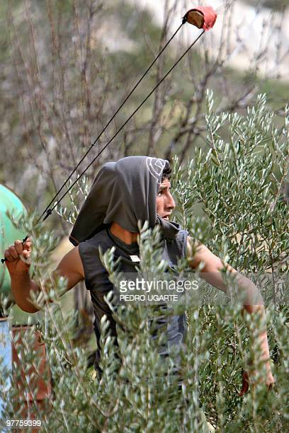 A Palestinian youth uses a slingshot to stone Israeli border policemen during a demonstration against Israel's separation barrier near the West Bank...