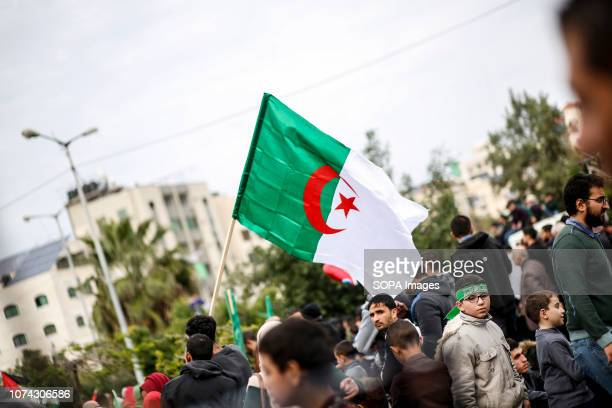 Palestinians man seen holding an Algerian flag during the rally Palestinians take part in a rally marking the 31st anniversary of Hamas' founding