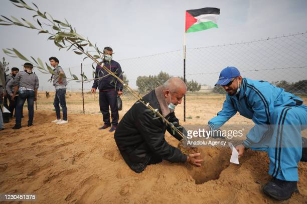 "Palestinians plant olive trees for ""Palestinian Martyrs' Day"", within the event campaign held by Palestinian High Council of Youth and Sports, in..."
