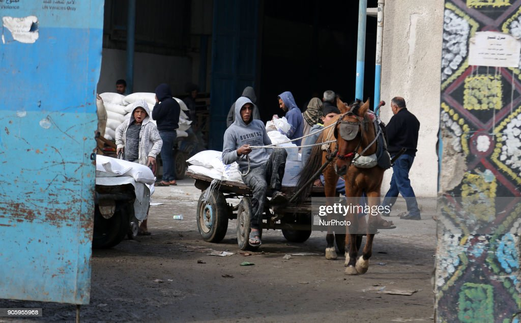 Palestinians receive food aid UNRWA