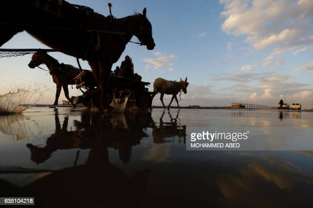 Palestinians ride donkey carts through a wet street after the rain at the AlShatee refugee camp in Gaza City on February 13 2017 / AFP / MOHAMMED ABED