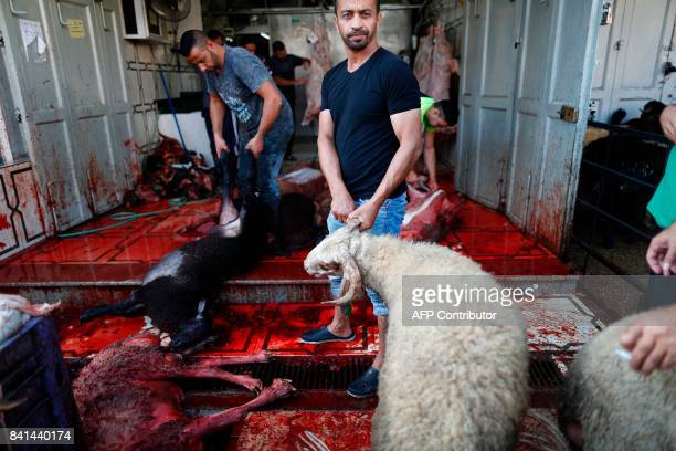 Palestinians slaughter sheep to mark the first day of Eid alAdha or the Festival of Sacrifice at a butcher's shop in the West Bank city of AlRam...