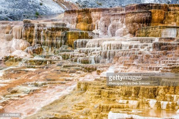 palette spring mammoth hot springs yellowstone - トラバーチン ストックフォトと画像