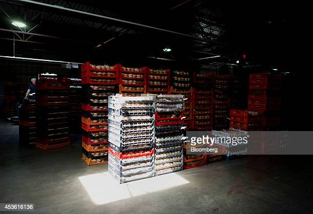Palettes of bread and rolls sit stacked for delivery in the shipping area at the Orlando Baking Co in Cleveland Ohio US on Wednesday Aug 13 2014...