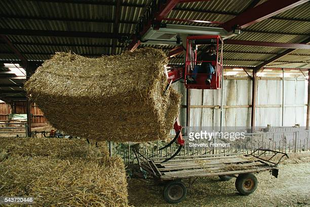 A Palfinger crane lifts mixes and distributes hay   Location Courdemanche France