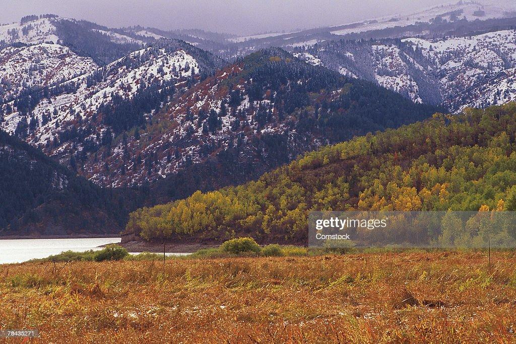 Palisades reservoir in Caribou-Targhee National Forest : Stockfoto