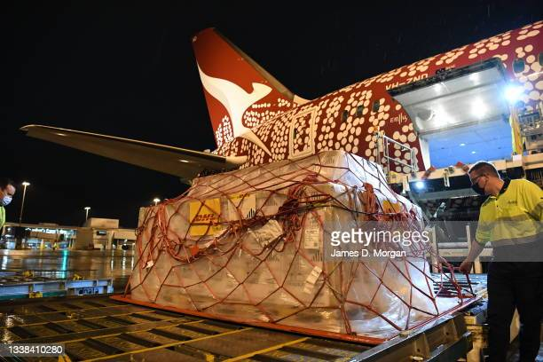 Pallet of Pfizer vaccines is unloaded after landing on Qantas flight QF10 from London at Kingsford Smith International Airport on September 05, 2021...