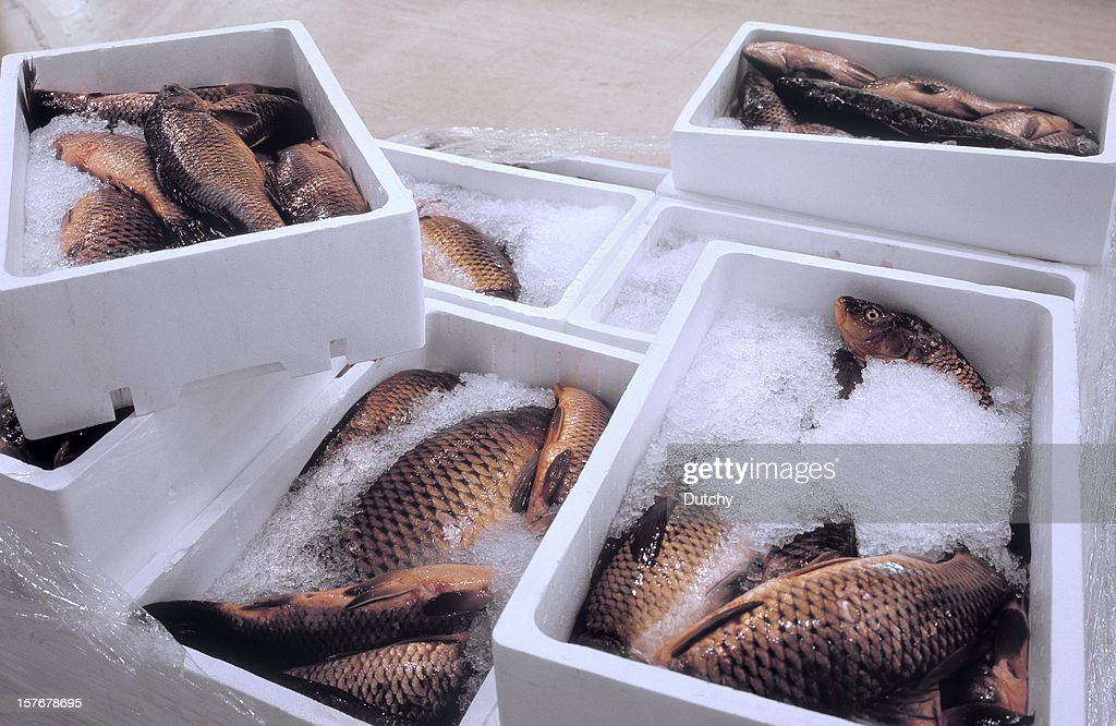 Pallet with fresh fish at a wholesale market. : Stock Photo
