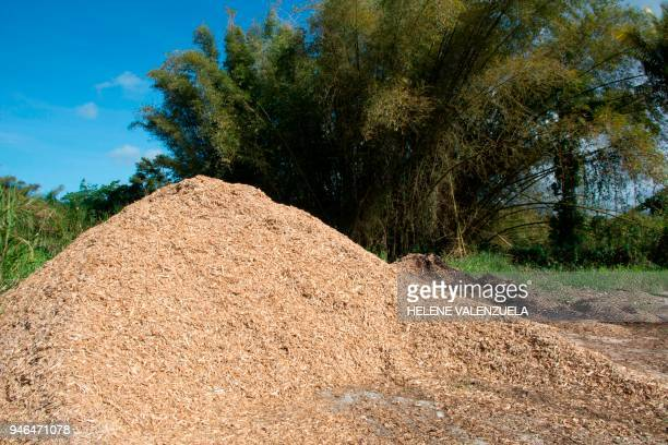 Pallet wooden chips are stored at the Domaine Duclos Prise d'Eau site of the French National Institute of Agricultural Research a public research...