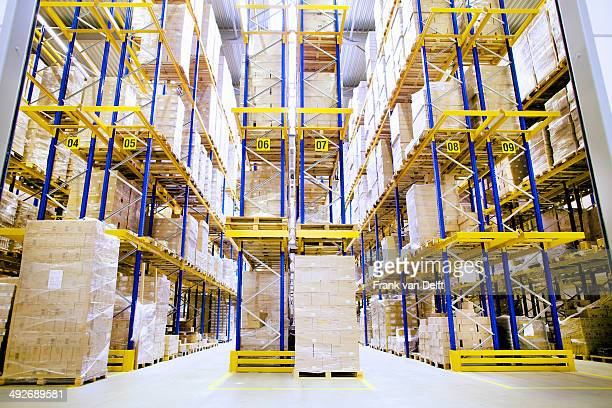 pallets and shelves in distribution warehouse - hoch allgemeine beschaffenheit stock-fotos und bilder