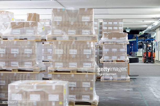 pallets of stock in warehouse - sigrid gombert stock pictures, royalty-free photos & images