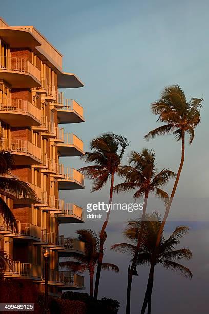Palm Beach Sunset