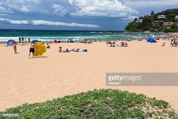 パームビーチシドニー - sydney ストックフォトと画像
