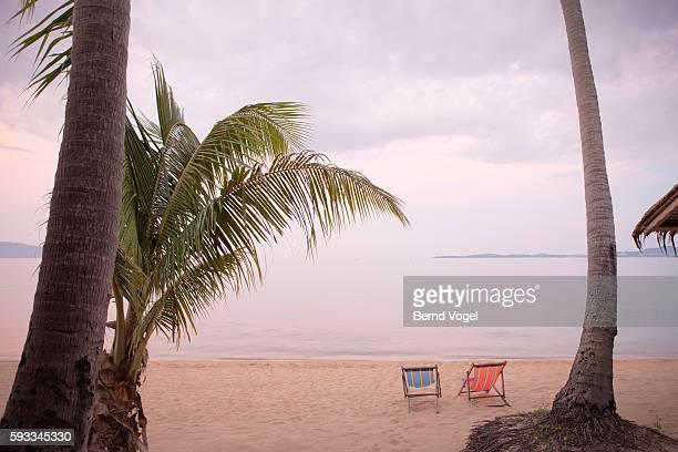 Palm beach with deck chair