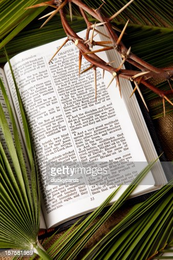 Palm Branches And Crown Of Thorns With Kjv Bible Stock