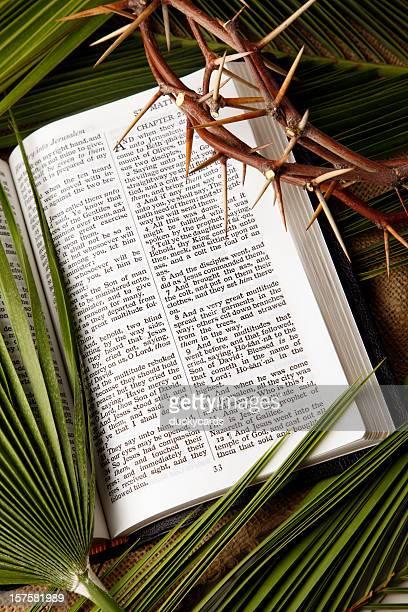 palm galhos e coroa de espinhos com kjv bíblia - domingo de ramos - fotografias e filmes do acervo
