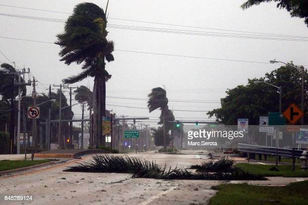 Palm branches fall across US1 Federal Highway as Hurricane Irma strikes on September 10 2017 in Boca Raton Florida Hurricane Irma made landfall in...