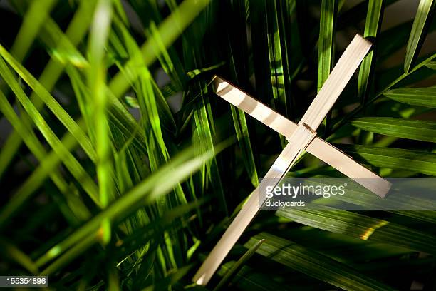 palm cross and leaves - palm sunday stock pictures, royalty-free photos & images